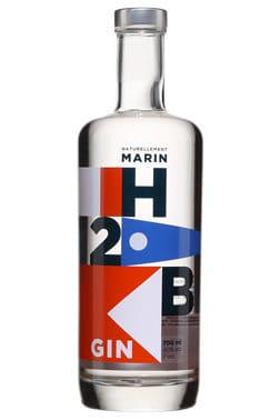 , Quand la Bretagne se met au gin