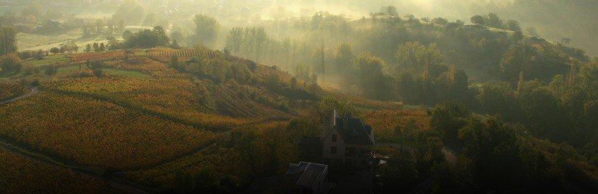 , Le vin de la semaine: Du fer servadou !