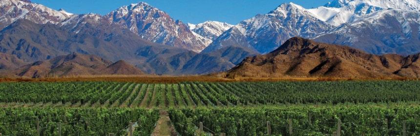 , Le vin de la semaine : Une petite gâterie argentine