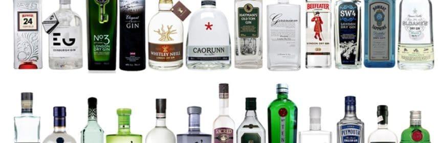 , Le gin en folie