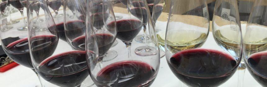 vin à moins de 12$, 10 vins à moins de 12$ !