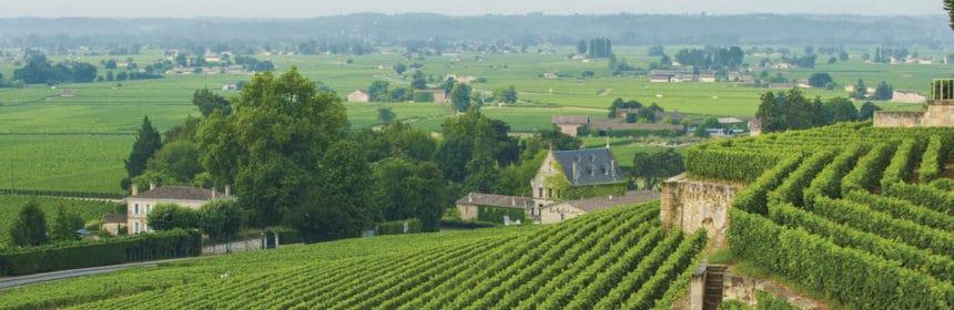 , 5 vins de Bordeaux à bon prix