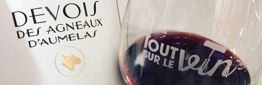 , Un très bon vin du Languedoc