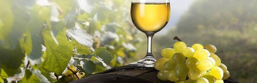 , Trois vins blancs pour l'automne