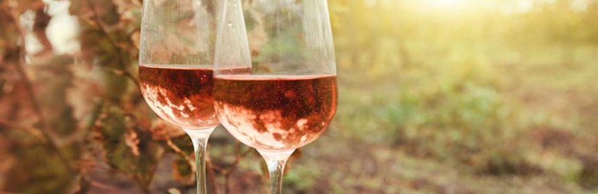 , Du rosé pour l'automne ?