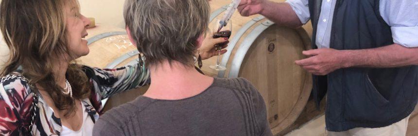 vin de sicile, Le grand Danois et son improbable vignoble