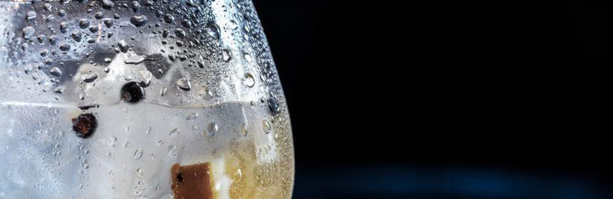 gin, Deux nouveaux gins québécois à découvrir