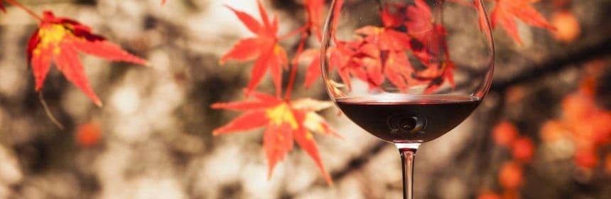 Trois suggestions de vin