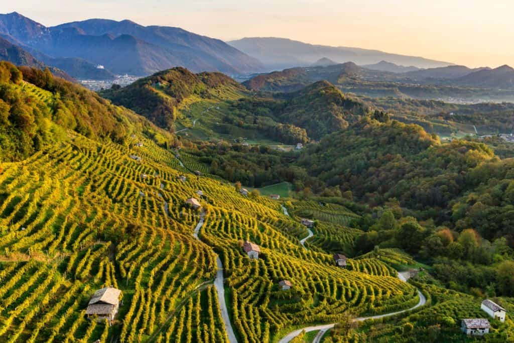 Les paysages de la DOCG Conegliano Valdobbiadene