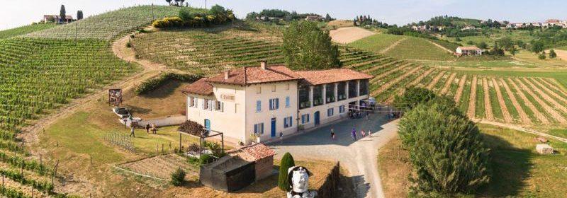 Michele Chiarlo Tout sur le Vin