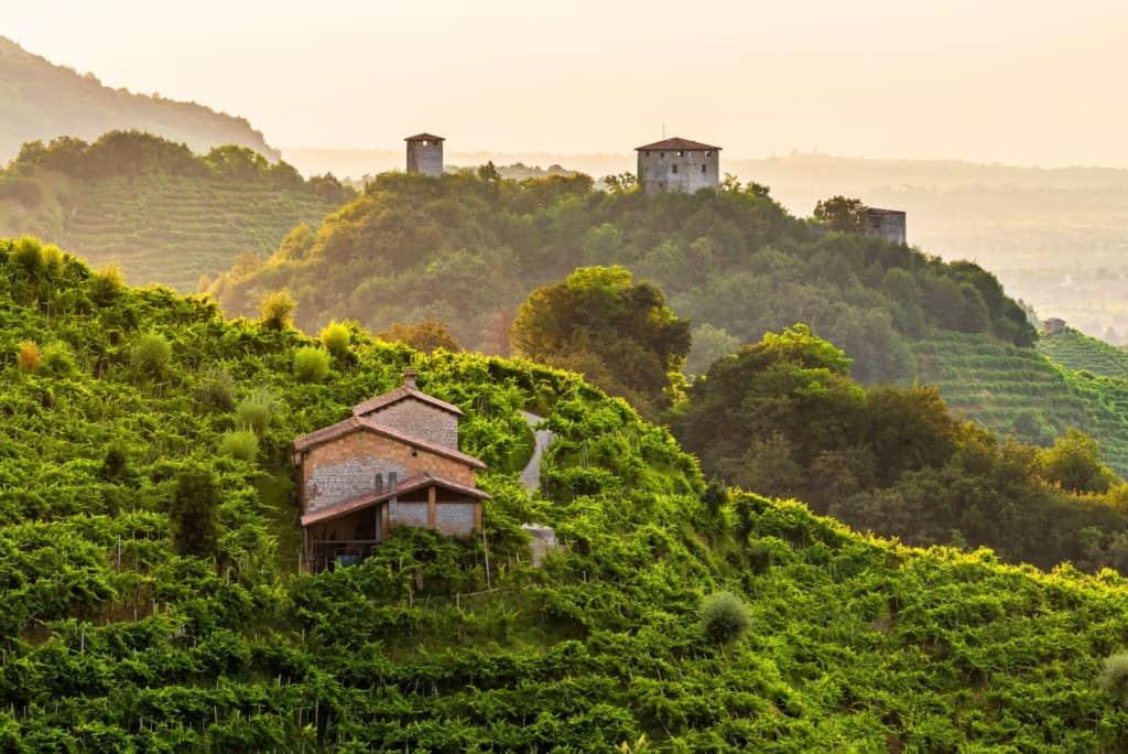 Prosecco Superiore - Tout sur le Vin