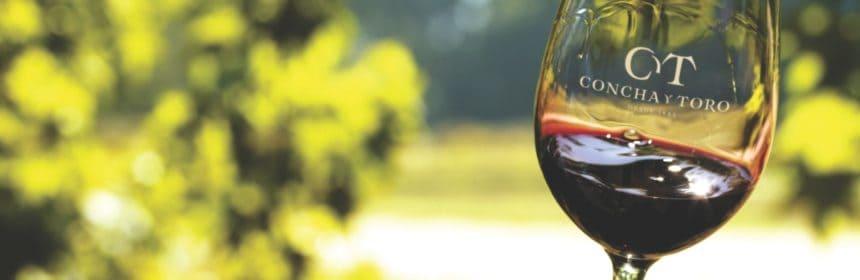 Concha y Toro - Tout sur le Vin