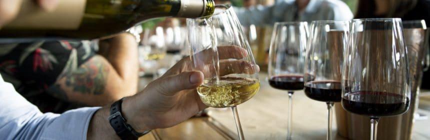 Trois petits bons vins - Tout sur le Vin
