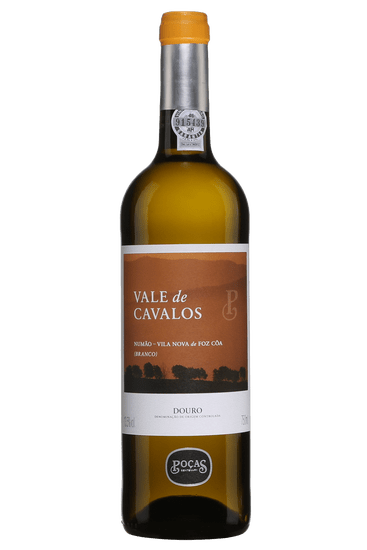 Poças Vale de Cavalos 2018