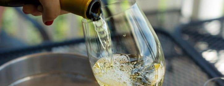 Le cépage blanc le plus populaire au Québec - Tout sur le Vin