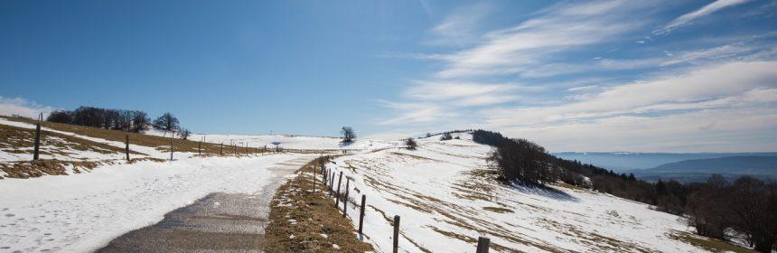 Paysage d'hiver avec du soleil