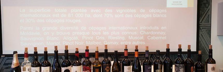 Vins de la Moldavie - Tout sur le Vin